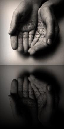 20121115-120437.jpg